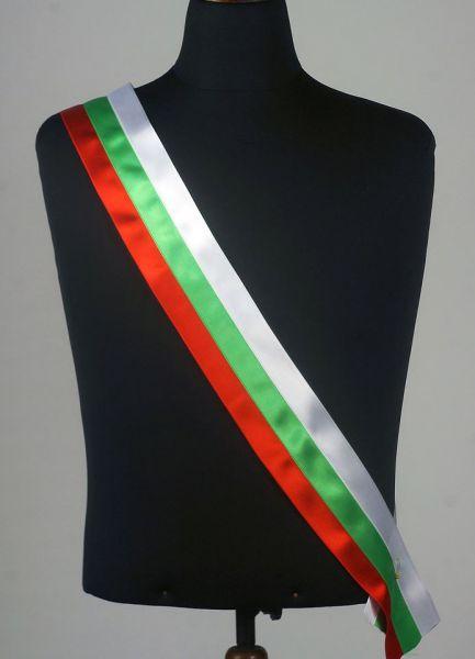 Лента Трикольор - Знаменосец